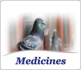 Medicines for pigeons