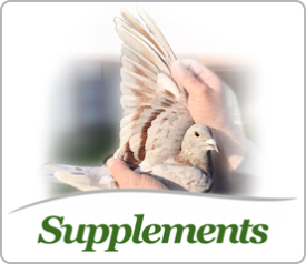 Supplements for pigeons